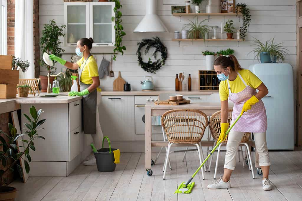 General cleaning of the kitchen professional house