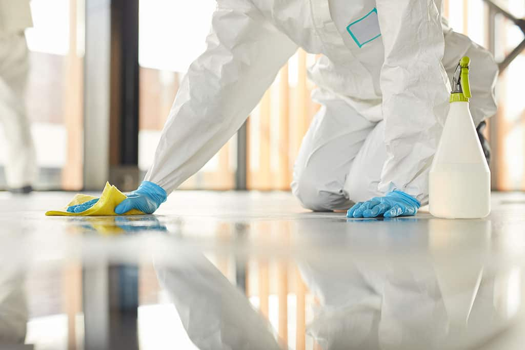 Professional Floor Cleaning